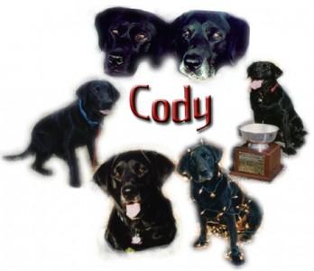 Cody collage
